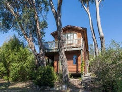 14 Roslyn Avenue, Kingston Beach, Tas 7050