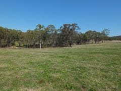 Lot 2 Brittlejack Road, O'Connell, NSW 2795