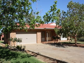 851 Holt Road, Griffith, NSW 2680