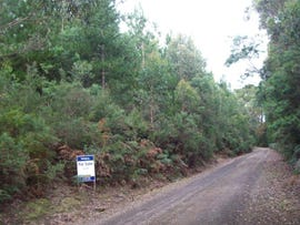 Chilcotts Road, Sprent, Tas 7315