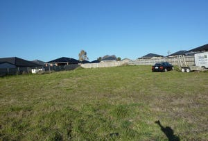 100 Mount Stuart Drive, Newnham, Tas 7248