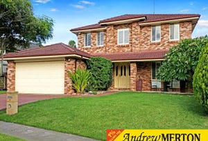 6 Peppertree Grove, Quakers Hill, NSW 2763