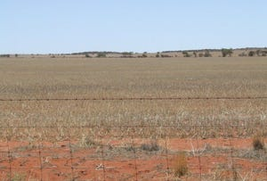 Mullewa, address available on request
