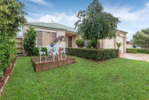 7 Bransby Place, Mount Annan, NSW 2567