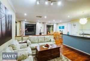 29 Bonnievale Terrace, Wanneroo, WA 6065