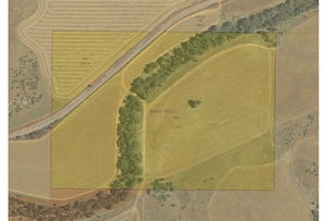Lot 791 Horrocks Road, Sandy Gully, WA 6535
