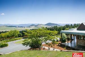206 Gooromon Ponds Road, Wallaroo, NSW 2618