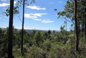 Lot 9, L19 Forest Heights Drive, Tugrah, Tas 7310