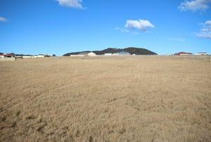 8 Parkes Drive Saddlers Estate, Tenterfield, NSW 2372