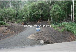 Lottah Road, Goulds Country, Tas 7216
