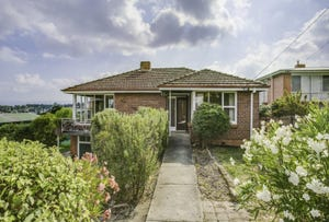 1 Mimosa Place, Youngtown, Tas 7249