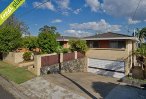 20 Caratel Street, Stafford Heights, Qld 4053