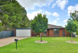 21 Wilkie Drive, Irymple, Vic 3498