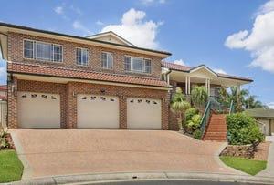 9 Nicol Place, Hinchinbrook, NSW 2168