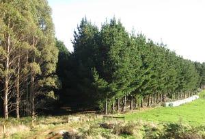 . Etchells Road, Mawbanna, Tas 7321