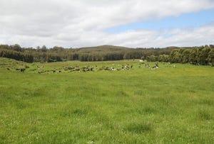 108 Mclachlans Road, Irishtown, Tas 7330