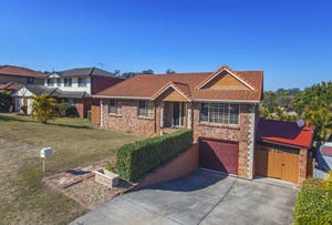 25 Moresby Avenue, Springfield, Qld 4300