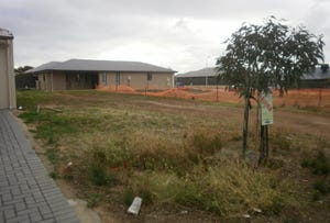 Lot 49, CHARDONNAY BOULEVARD, Reynella, SA 5161