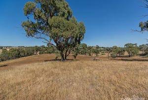 Lot 2 Tarnagulla Estate, Orange, NSW 2800