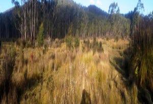 242 Prossers Road, Nunamara, Tas 7259