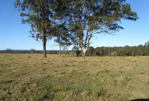 Wants Road, Lawrence, NSW 2460
