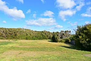 2 William Parish Drive, Low Head, Tas 7253
