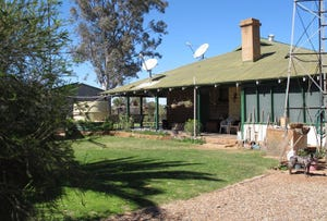 Yalgoo, address available on request