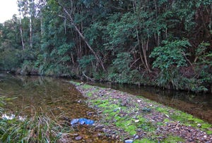 558 Reedy Creek Road, Dignams Creek, NSW 2546