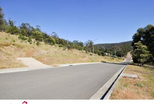 Lots 1 and 4 plus balance Land (63.33ha ) Mary St, Orford, Tas 7190