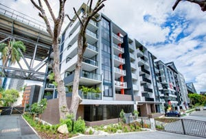 3207/19 Anderson Street, Kangaroo Point, Qld 4169
