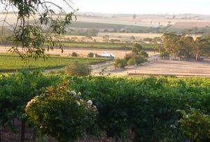 261 Rifle Range Road, Bethany, SA 5352