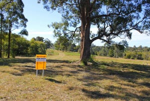 Lot 221 Beechwood Road, Beechwood, NSW 2446