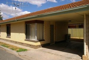 3/165 Eighteenth Street, Renmark, SA 5341