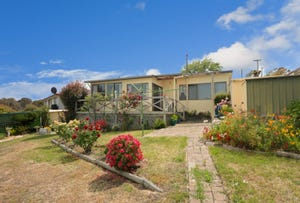 22 Brady Street, Midway Point, Tas 7171