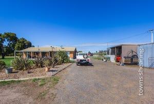 44 Phillip Street, Perth, Tas 7300