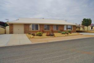 1 Ian Drive, Paringa, SA 5340