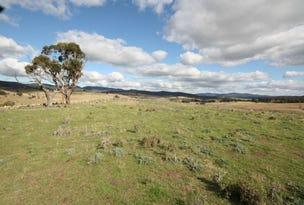 Lot A DP 387895, 55 Daniel Lane, Forbes, NSW 2871