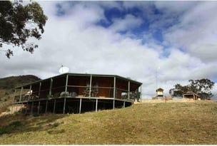 1214 Lue Road, Lue, NSW 2850