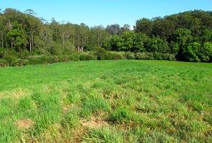 217 Mount St, Fernmount, NSW 2454