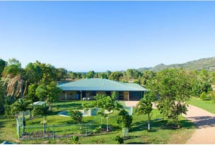 11 Dolphin Court, Magnetic Island, Qld 4819