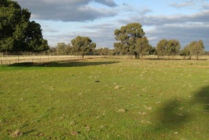 LOT 36 Dahwilly Road, Deniliquin, NSW 2710