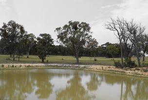 Lot 2 Turon Gates Road, Capertee, NSW 2846
