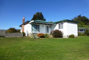 1229 Murchison Highway, Elliott, Tas 7325