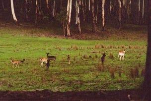 0 Packers Swamp Road, Nimmitabel, NSW 2631
