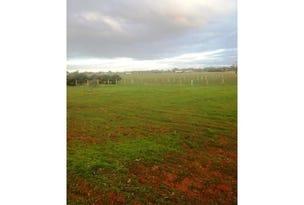 Lot 10A Wanera Lane, Goodnight, NSW 2736