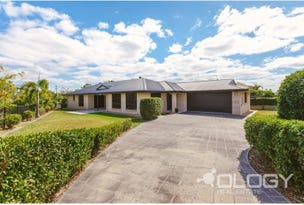 19 Walnut Avenue, Norman Gardens, Qld 4701