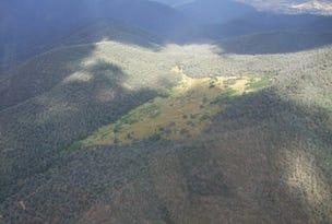 00 Scrubby Creek Track, Benambra, Vic 3900
