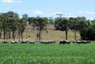 936 ACRES GRAZING & CULTIVATION, Bell, Qld 4408