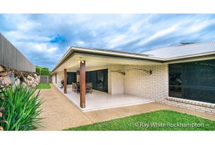 21 Reddy Drive, Norman Gardens, Qld 4701
