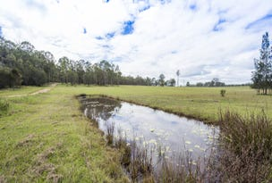 Lot 1 Orara Downs Lane, Levenstrath, NSW 2460